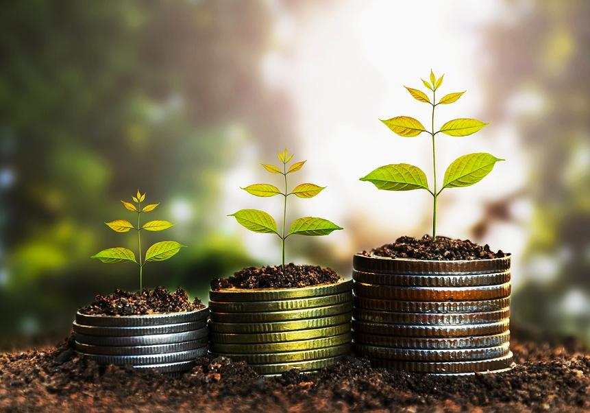 4 domande da farti prima di investire in una ICO