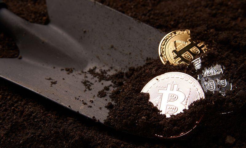 Come guadagnare con il mining di bitcoin: Nova Elysion