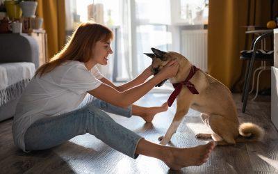 I cani percepiscono il tempo?